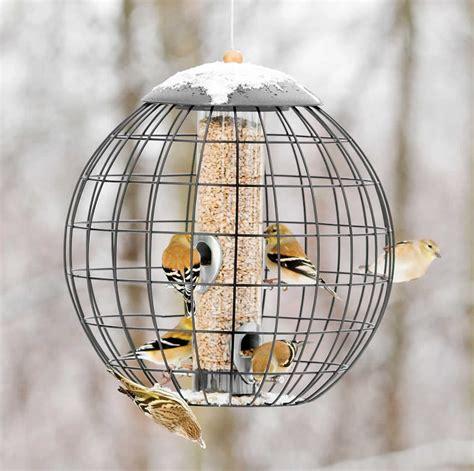squirrel proof bird feeder for large birds