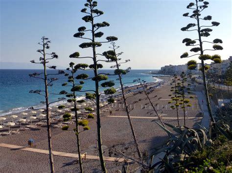 turisti per caso rodi lungo mare rodi viaggi vacanze e turismo turisti per caso