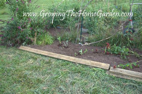 vegetable garden borders the border bed outside of the vegetable garden growing