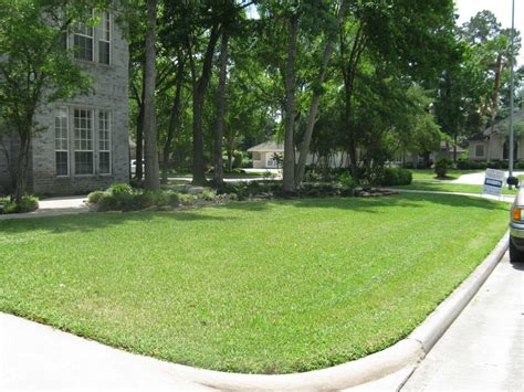 houston lawn mowing landscaping tree removal or