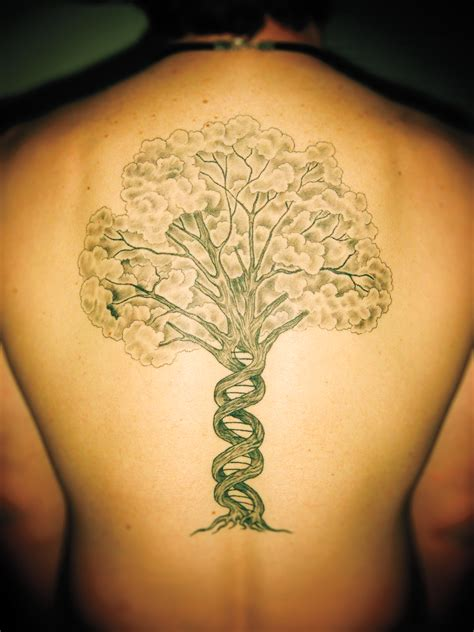 science tattoo science 9 quot kevin bonham quot and the tree of