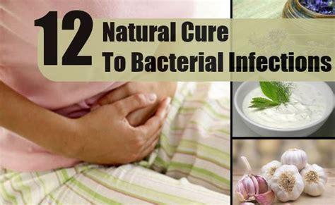 cure for bacterial infections how to cure