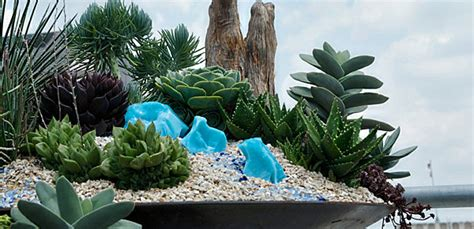mini rock garden ideas 20 fabulous rock garden design ideas