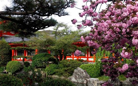 Garden Of Quality Japan Wallpapers Hd Wallpaper Cave
