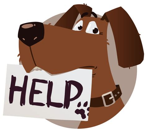 Helpless Dogs And Cats Are For Your Help by Driving By Stray Dogs Cats Dealing With Pets That