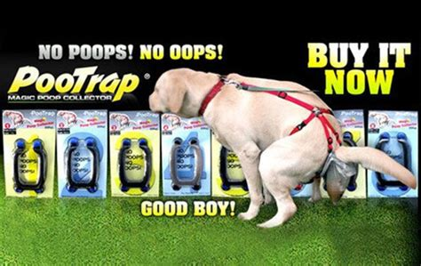 products for lazy people strange dog cat products pootrap for dogs good luck