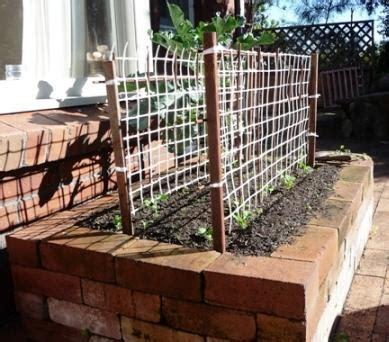 building  raised bed vegetable garden building raised