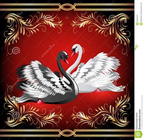imagenes en blanco rojo y negro cisne blanco y negro en fondo rojo foto de archivo