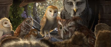 film cartoon owl legend of the guardians the owls of ga hoole images