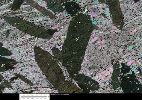 muscovite in thin section hornblende garnet thin section