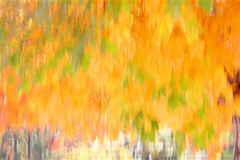 what are fall colors fall color abstract fall colors abstract abstract colors