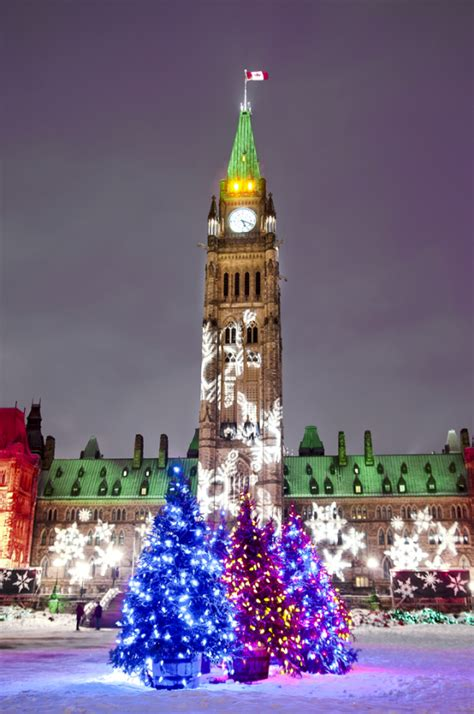 canadian christmas trees on parliament hill michel loiselle photos