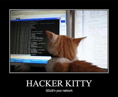 best computer hackers top 5 most notorious computer hackers techeblog