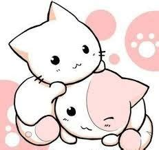 imagenes de gatitos kawaii anime im 225 genes de gatitos kawaii im 225 genes