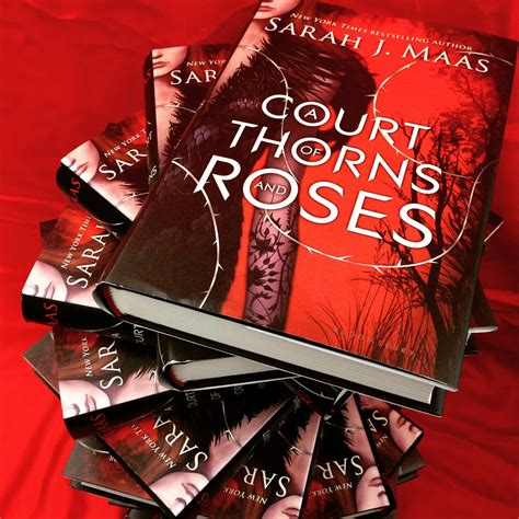 a court of thorns a court of thorns and roses the eleventh column