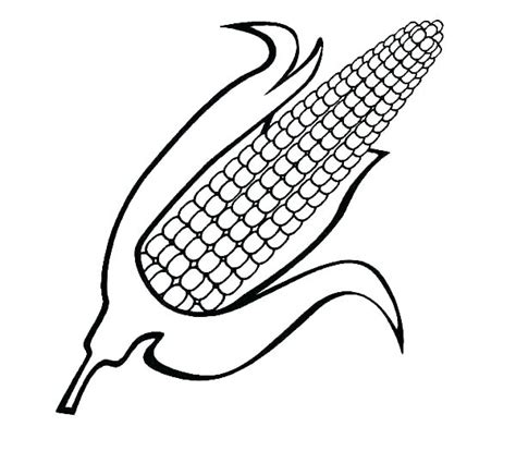 corn stalk template corn coloring pages printable stalk template