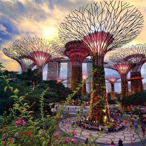Tiket Garden By The Bay Singapore tiket garden by the bay taman avatar singapore 2018