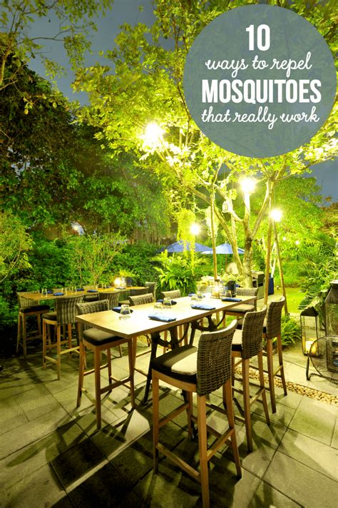 repelling mosquitoes backyard 10 ways to repel mosquitoes that really work simply stacie