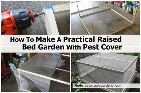 how do i make a raised garden bed how to make a practical raised bed garden with pest cover