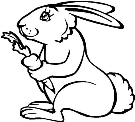 rabbit hutch coloring page hutch coloring pages