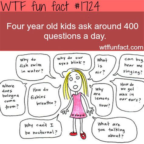 new year child facts facts interesting facts