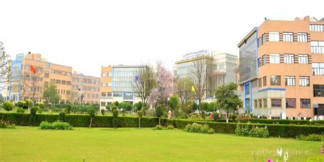 Mba Colleges In Gurgaon by Gurgaon Institute Of Technology Management Gitm