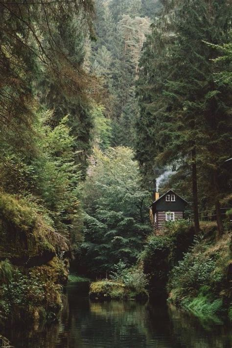 cabin house in hidden forest woods magical places forest