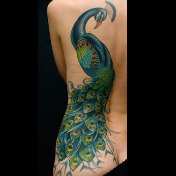 tattoo meaning peacock peacock tattoo meanings itattoodesigns com