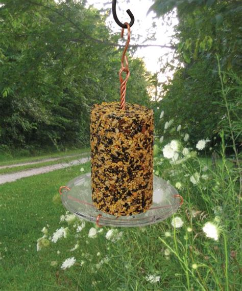 Cylinder Bird Feeder Songbird Essentials Seed Cylinder Tray Bird Feeder