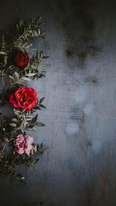sfondi scrivania pin di giulia veneto su fiori nel 2019