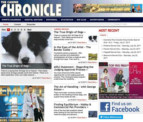 canine chronicle top 10 most informative websites for dog breeders