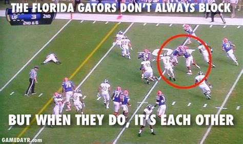 Florida Gator Memes - week 14 sec picks and other games i care about rock m