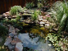 pond landscaping ideas landscaping gardening ideas