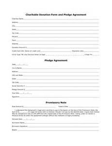 charity pledge form template charity donation form template
