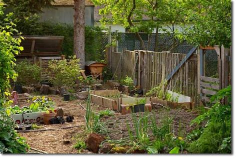 Backyard Homesteading by Permaculture Homestead Showcasing Current