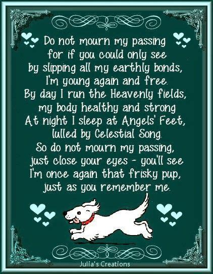 do all dogs go to heaven grieving the loss of your pet books 17 best pet loss quotes on loss quotes