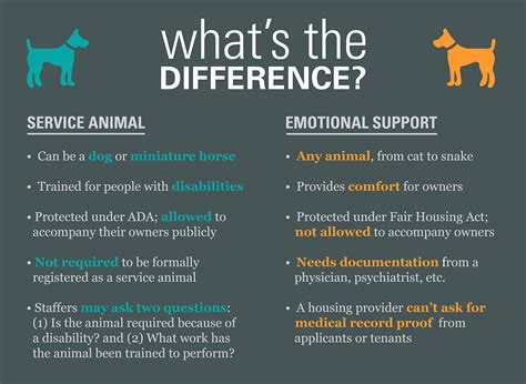 emotional support vs service what s a service animal nobody knows thestatehousefile thestatehousefile