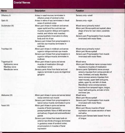 Brown S Regional Anesthesia Review Freesul 1 employment 2