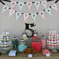 birthday themes for twin boy and girl 40 best birthday ideas boy girl twins images on