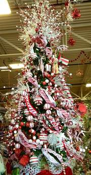 Candy Cane Lane Decoration Ideas Candy Cane Christmas Tree Merry Little Christmas