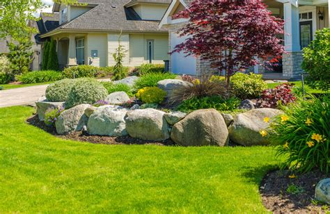feature tree for front yard 101 front yard garden ideas awesome photos