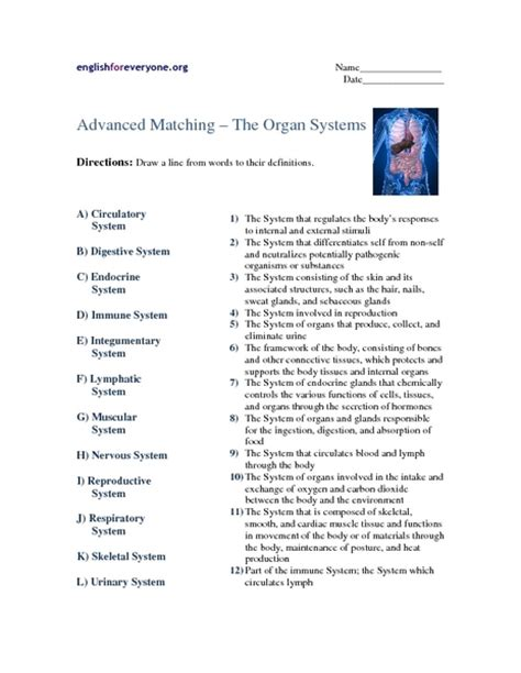 Systems Matching Worksheet Answers grade 10 week 5 organ systems cambrowncontemphealth