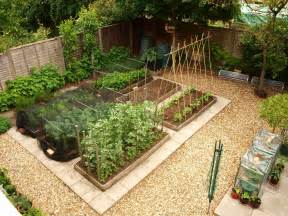 mark s veg plot gardening advice for beginners part 1