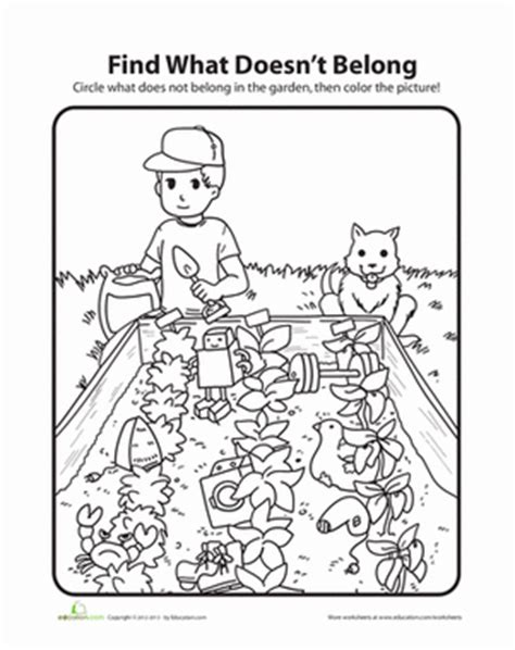garden coloring worksheet what doesn t belong garden coloring page education