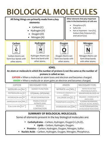 carbohydrates a level notes ocr a biology revision on biological molecules by