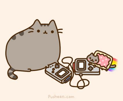 i am pusheen the cat poptart gifs wifflegif