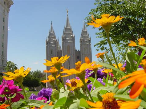 4 description flowers on temple square grounds looking at