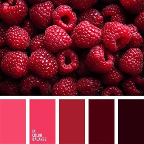 rasberry color 1000 images about color therapy on color