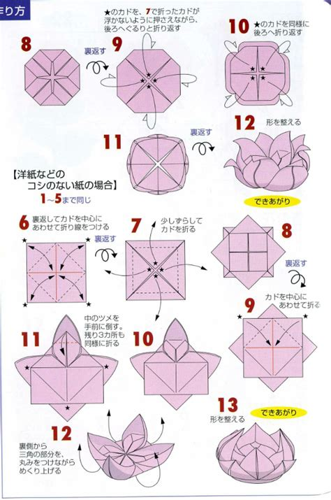 Origami Flower Directions - origami flower lotus driverlayer search engine