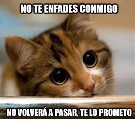 imagenes para enamorar y pedir perdon frases para pedir perd 243 n a un amor gato png jpg 520 215 459